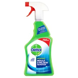 DETTOL MOULD AND MILDEW 750ML